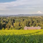 Another Oregon winery plucked by a California estate
