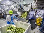 Photos: How Taylor Farms embraces technology, alternative energy