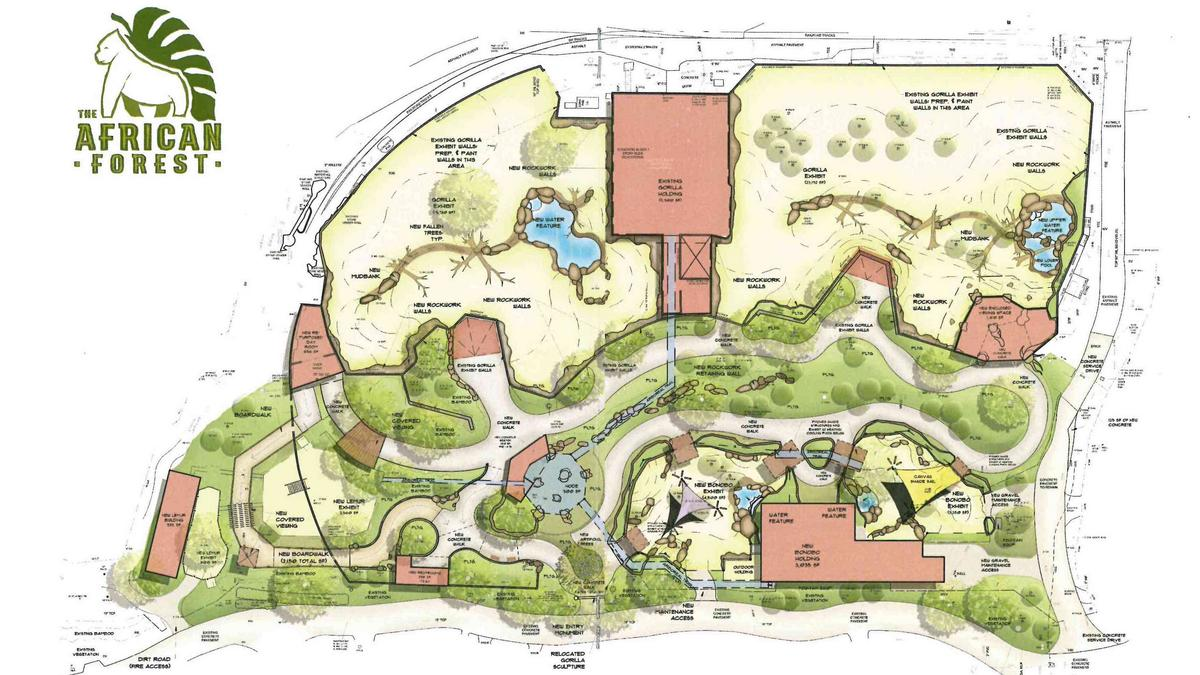 The path ahead for the Jacksonville Zoo Jacksonville Business Journal