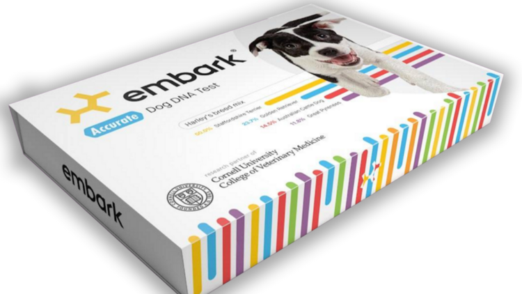 Dog DNA testing company Embark chases new goal: working with