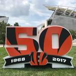 See where Bengals are placing 1,000-pound sculptures to mark 50th season