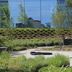 Fence removal reveals Northwestern Mutual tower's public green space: Slideshow