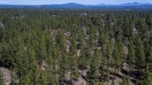 NW Bend Development Opportunity