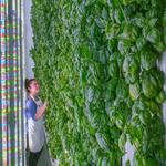 The Funded: Indoor farming startup harvests $200M mega funding round (video)