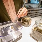 Bay Area cannabusinesses, expecting a boom, struggle to lease retail space