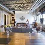 Coolest office spaces: Green Clean combines an organic feel with functionality