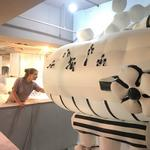 Children's Museum 'Exhibits Team' designs around the world (Photos) (Video)
