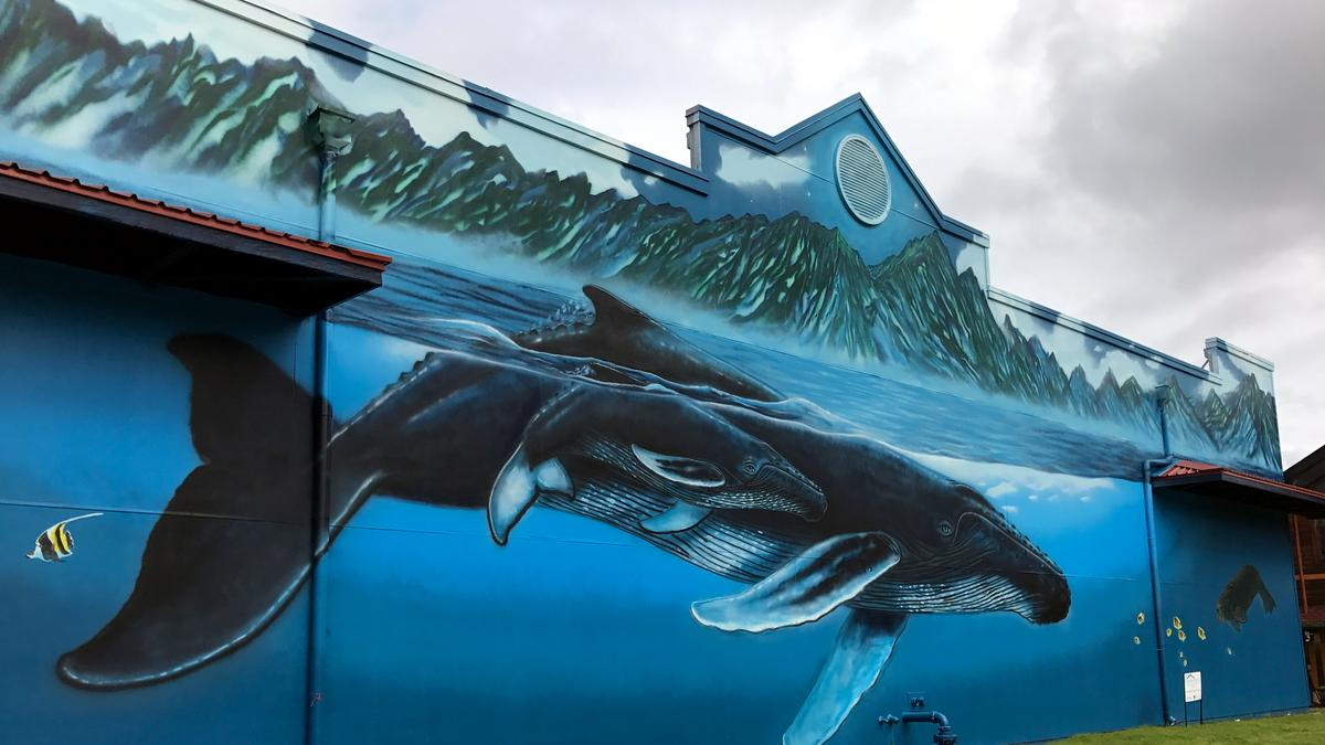 marine life artist wyland to restore whale murals in hawaii plans marine life artist wyland to restore whale murals in hawaii plans new whaling wall in cuba pacific business news