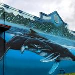 <strong>Wyland</strong> to restore Hawaii whale murals