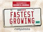 Fast-growing businesses follow different paths