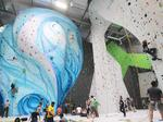Has Memphis already hit peak rock climbing before its first gym opens?