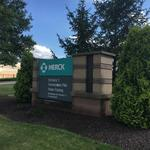 Merck to move scientists and money toward promising cancer drug