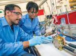 Dr. Etosha Cave, co-founder of Opus 12 and a Cyclotron Road alumna, works with intern Daniel Ramos at Berkeley Lab.