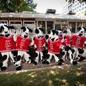 If you want Chick-fil-A fast, 'tell them your wife's in labor'