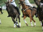 Hawaii Invitational of Polo draws big name sponsors who share same vision
