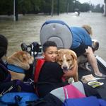 Businesses step up to help those affected by Harvey