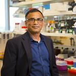 Shaukat Rangwala helps boost revenue to $4 million at MOgene