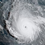 <strong>Bondi</strong> activates price-gouging hotline as Hurricane Irma approaches