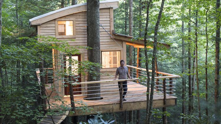 Cincinnati tree house builder gets pilot on Animal Planet ... on