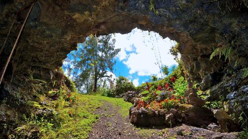 Your Very Own Private Cave & Lava Tube!