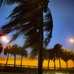 Irma weakens to a tropical storm over Florida (Photos)