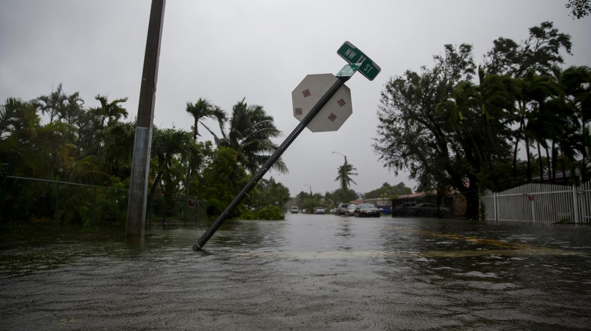 an economical perspective on the economic effects of the hurricane irma Q&a: the economic impact of hurricane irma we answer questions on storm  costs and the effects of the recovery and rebuilding efforts.
