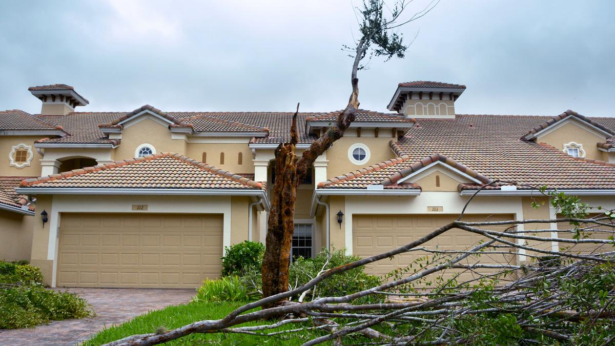 Cost Of Hurricane Irma In Orange County Orlando Orlando