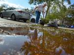 'Roofing contractors!!' wanted: Companies take stock of damage post-Irma