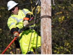 Duke restores power for much of the Carolinas, but work remains in Florida