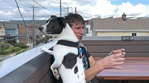 Little Rock owner Quinn Fallon on the bar's rooftop patio, with his dog Harvey.