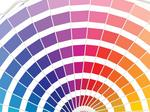 The color theory: ​How color changes everything