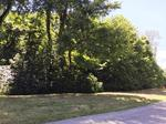 Home of the Day: Private wooded acreage in Blakely Woods:  2 lots available!