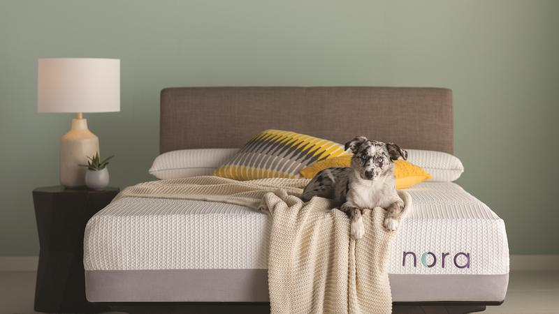 Wayfair Challenges Casper With Its Own Bed In A Box Called Nora