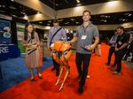 Photos: Can robot arms give your business a leg up on competitors?