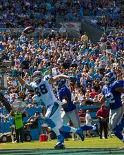 Carolina Panthers tight end Greg Olsen reaches in vain for a pass in the end zone.