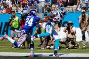 Carolina Panthers wide receiver Brandon LaFell catches a pass for a touchdown.