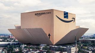 How often do you shop with Amazon?