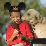Walt Disney World to welcome dogs to select hotels
