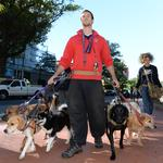 One of downtown D.C.'s most visible dog walkers is going brick-and-mortar on H Street NE