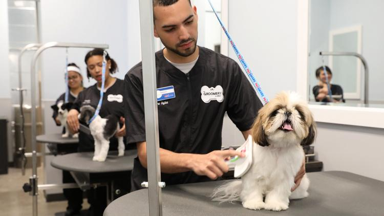 Petsmart launches groomery in chicago new york city chicago petsmarts the groomery offers a range of services for pets solutioingenieria Choice Image