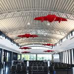 Tampa International adds $9.7 million to fund higher construction costs