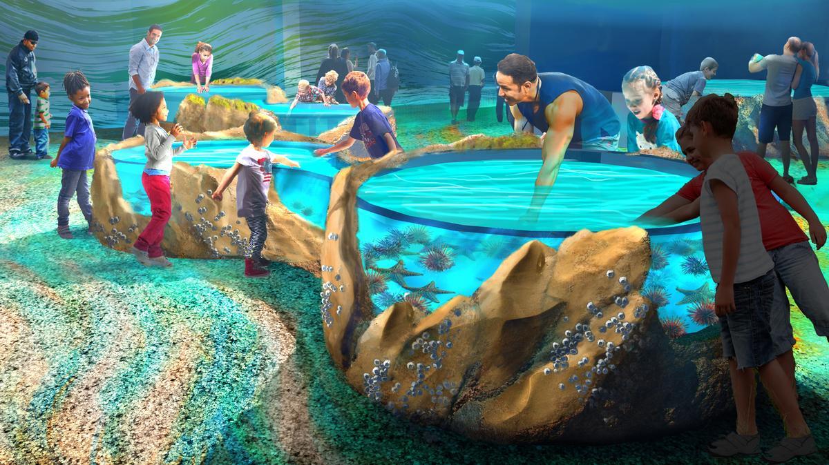LHM unveils video of $45 million St. Louis Aquarium at ...