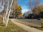 This neighborhood is one of Denver's most beloved (and expensive)