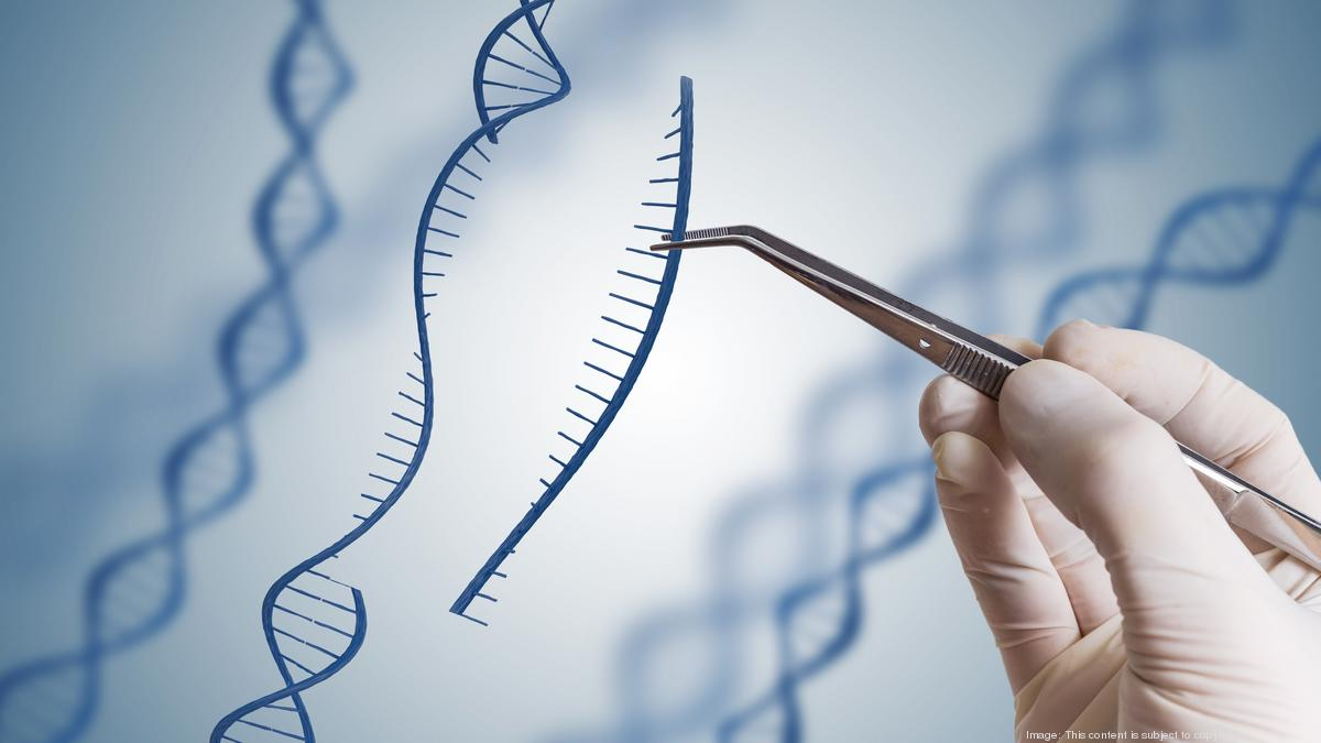 Arbor Biotechnologies, biotech startup co-founded by MIT's Feng