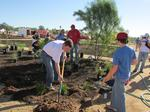 PHX Renews kicks off with aim to beautify vacant Central Phoenix lot