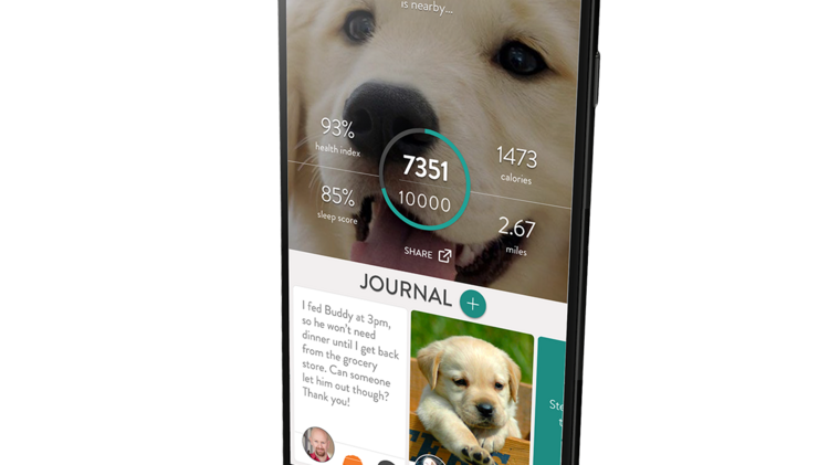 fitbark launches improved activity tracker kansas city business