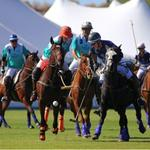 Polo event has global eyes