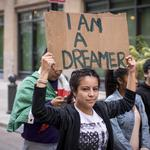 Pressure rises for DACA resolution