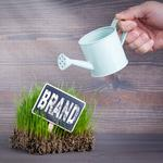 3 reasons to start a new branded product now