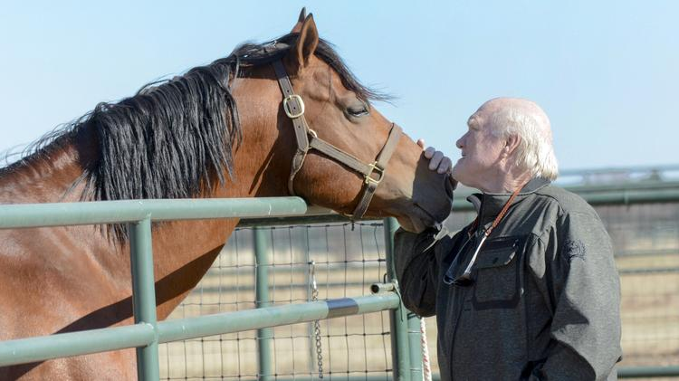 NFL Hall of Famer Terry Bradshaw to sell his $9 95M ranch on